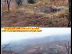İzmir kiraz tumbular da satılık kadstrol yola 0 köye yakın kestane bah