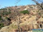 izmir bergama yukarıada da satılık köy içinde hobi bahçesi 2.100 m2