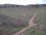 İzmir bergama çakırlar satılık orman yanı köy mücavir alan içerisinde